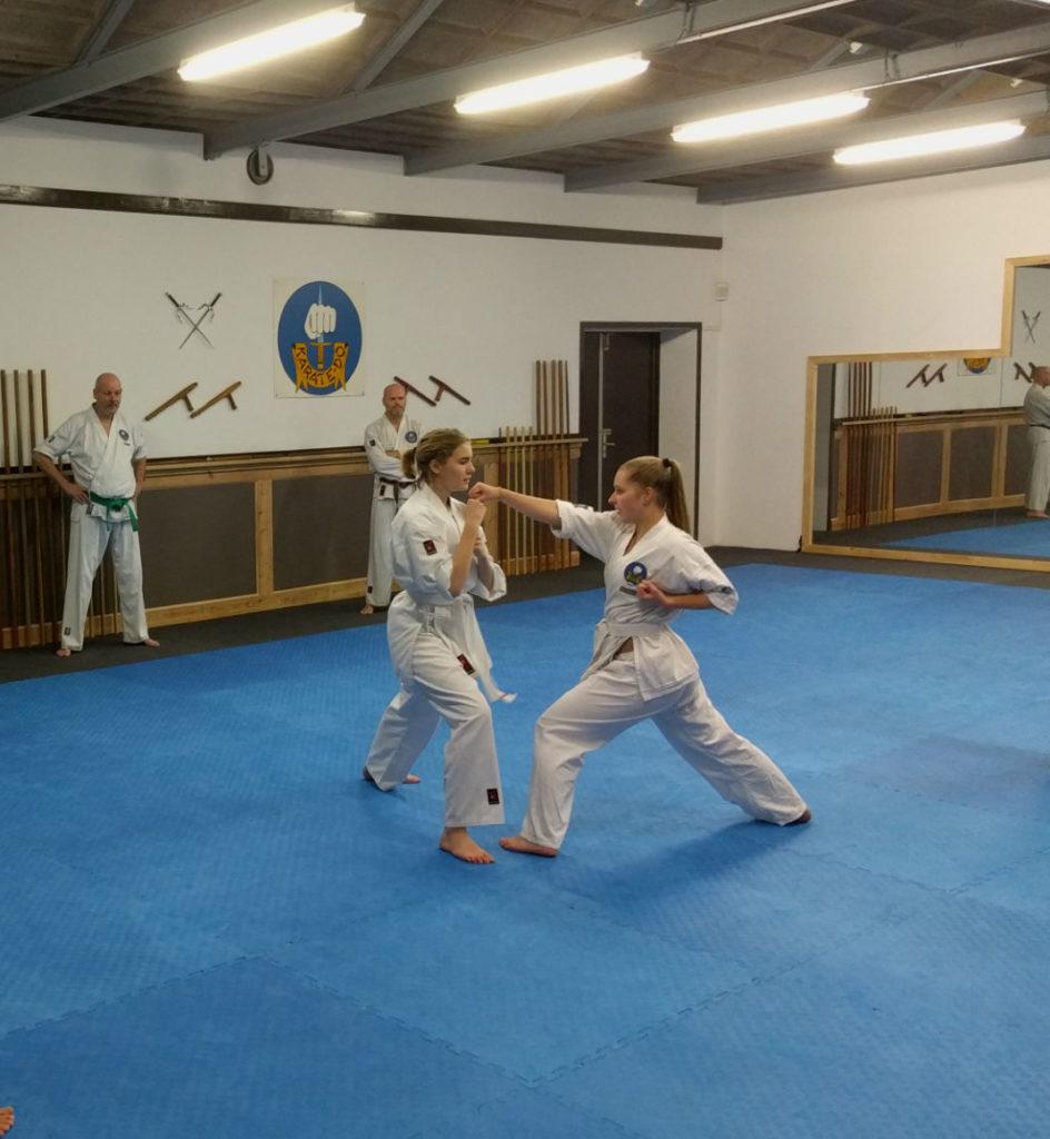 Kushido Karate Rotterdam